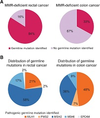 Figure 1. Germline mutations in patients with Lynch syndrome.