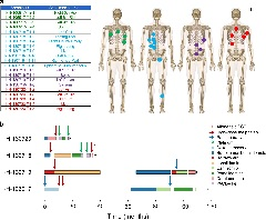 Fig. 2: Patient cohort and samples.