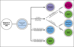 Figure 2. Schematic capturing our current general approach for relapsed or refractory patients with AML with some factors guiding the clinical decision process.