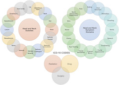 Fig 2. The capture of all head and neck subsites, across all domains, independent of the primary treatment modality was accomplished using a system based on the 10th revision of the International Statistical Classification of Diseases and Related Health Problems (ICD‐10) codes.