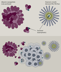 Figure 1. Current nanotherapies available for paclitaxel delivery in NSCLC