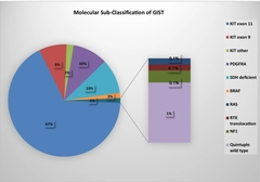 Figure 1: Molecular sub-classification of GIST