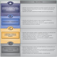 Figure 1. Key activities of the Project Renewal process.