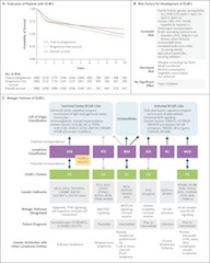 Fig 1. Outcomes of Diffuse Large B-Cell Lymphoma (DLBCL), Risk Factors, and Biologic Features.