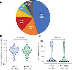 Fig 1. KRAS mutation subtypes and baseline pathologic and molecular characteristics.