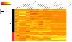Figure 1. Heat map showing correlation between different radiomics and ADC features with the two classes of lymph node (absent and present).