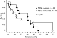 Fig 1. Survival curves of TET2 mutated and unmutated patients with non-indolent systemic mastocytosis (n=29).