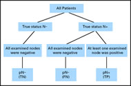 Fig 1. Description of the three categories in which a patient can be classified (true negative [TN]; false negative [FN]; true positive [TP]). N–, node negative; N+, node positive; p, pathologic.